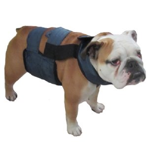 PolarPup™ Deluxe Vest with Neck Band